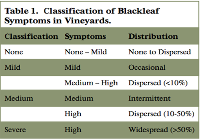 image:Blackleaf symptoms table.png
